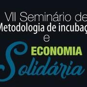 VII Seminário